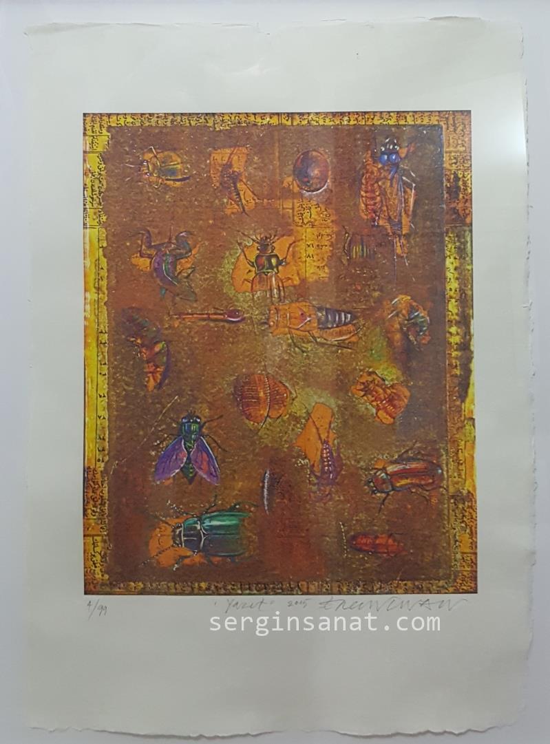 Ergin İNAN || 70x50 cm