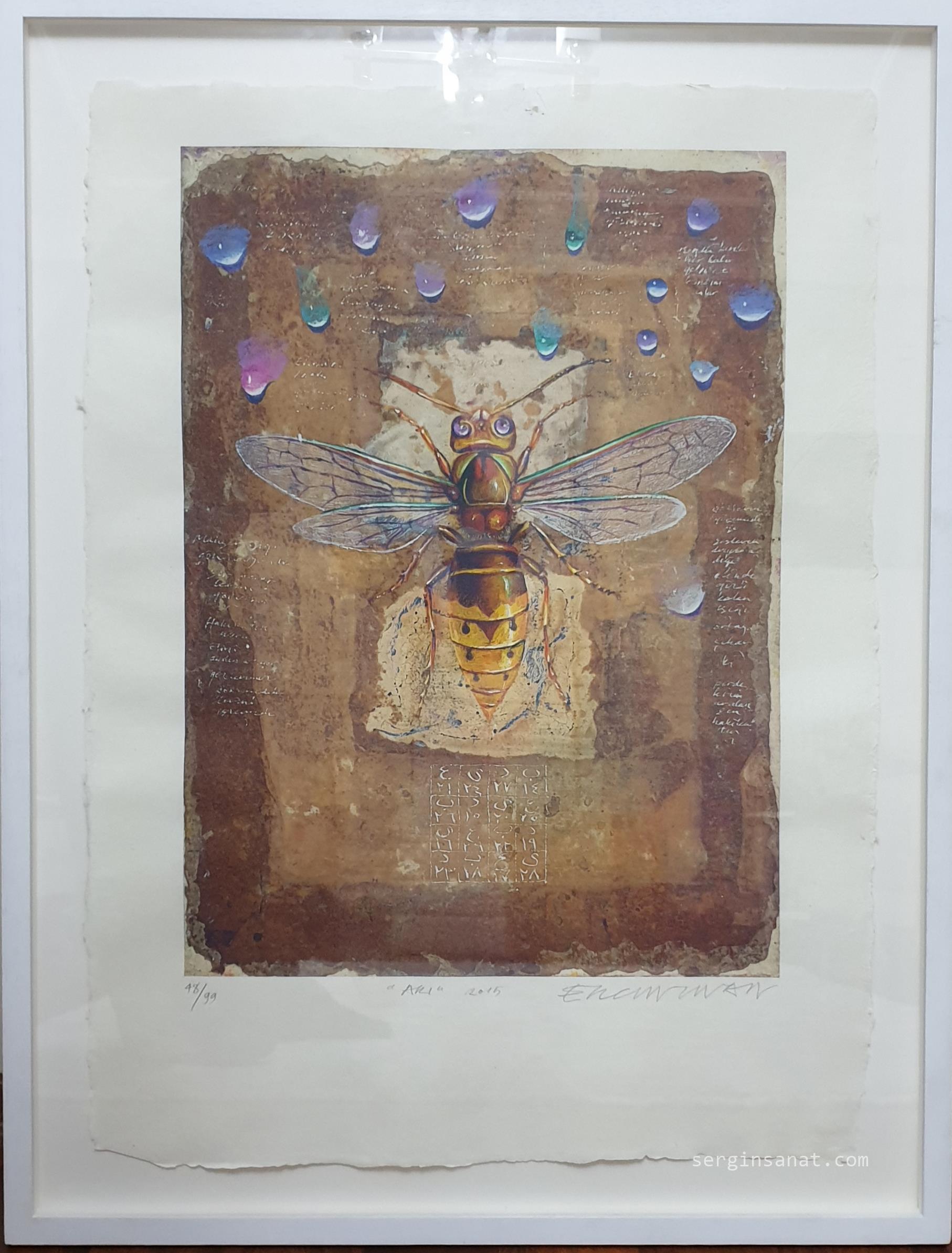 Ergin İNAN || 70x50 cm.